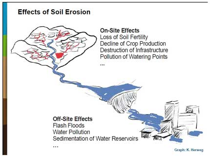 Effects-of-soil-erosion