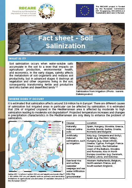 FactSheet SalinizationFrontCover
